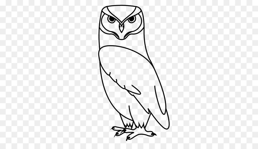 Burung Paruh Burung Clip Art Burung Hantu Unduh Burung Paruh