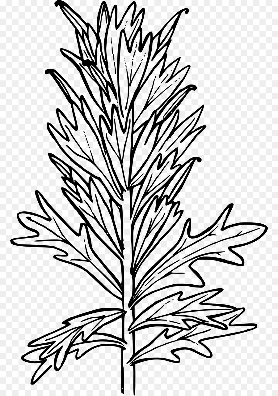 Paintbrush Clip art - paint png download - 834*1280 - Free ...