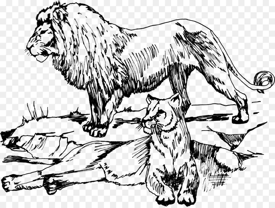 Bebé Leones Felidae Dibujo de los cinco Grandes de juego - león png ...
