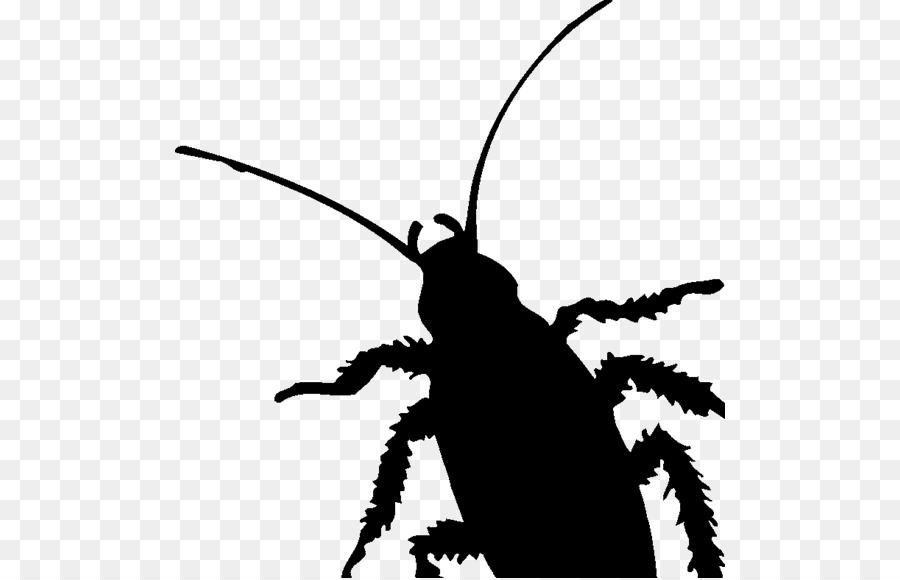 Cockroach insect pest silhouette clip art cockroach png download cockroach insect pest silhouette clip art cockroach ccuart Images