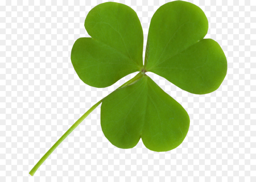 National Symbols Of Ireland The Republic Of Ireland And Northern