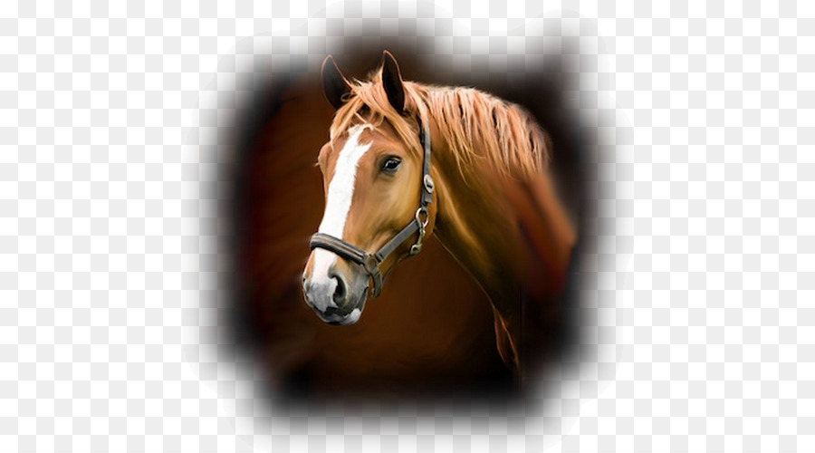 horse stable wall decal sticker barn - horse png download - 500*500