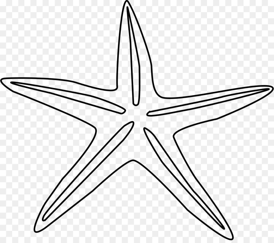 Starfish Buku Mewarnai Menggambar Laut Bintang Laut Unduh