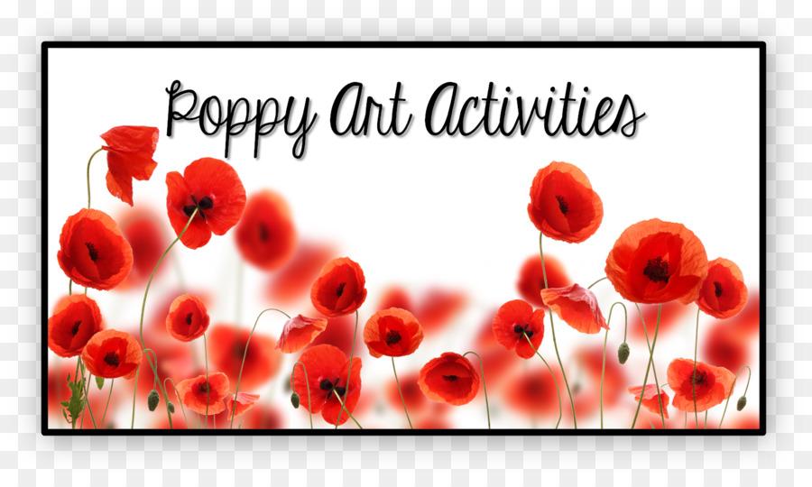 White Poppy Flower Canvas Print Art Poppy Field Png Download