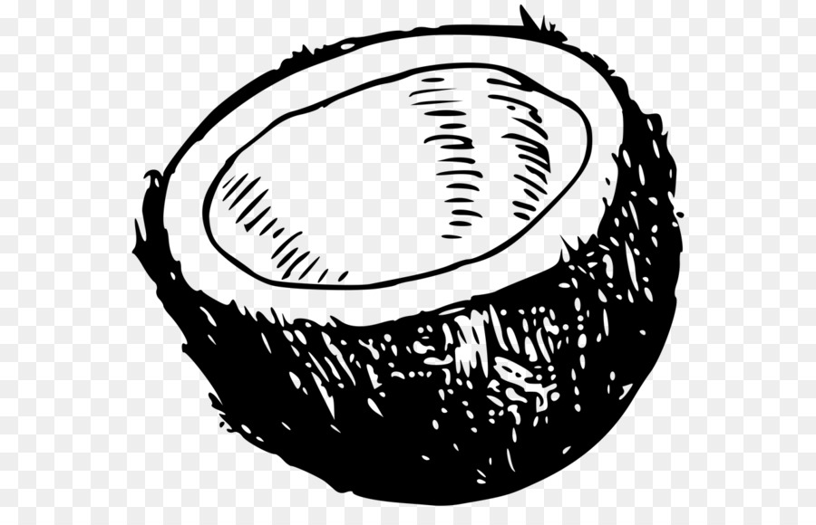 Coconut Black And White Clip Art