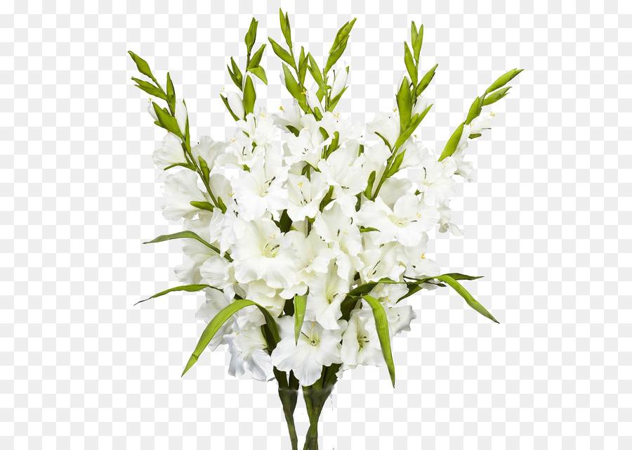 Floral design flower bouquet gladiolus white gladiolus png floral design flower bouquet gladiolus white gladiolus mightylinksfo