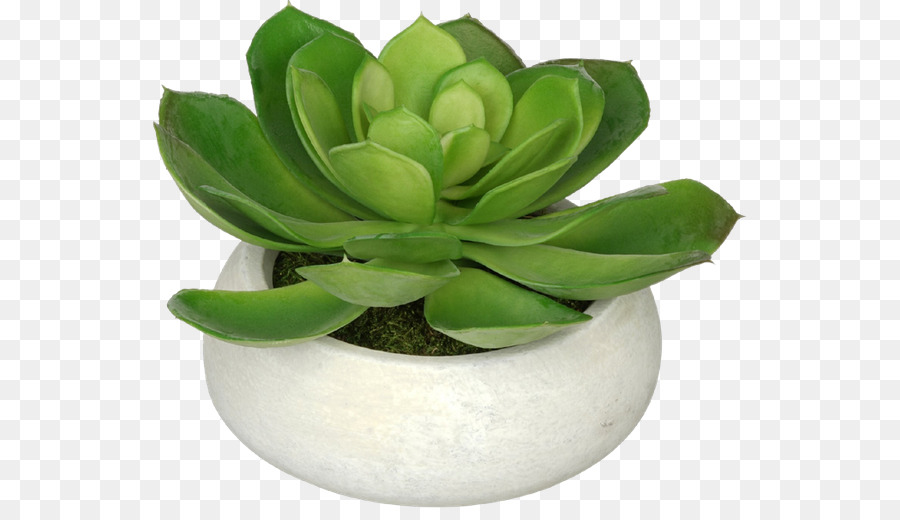 Flowerpot artificial flower house of silk flowers echeveria flower flowerpot artificial flower house of silk flowers echeveria flower mightylinksfo
