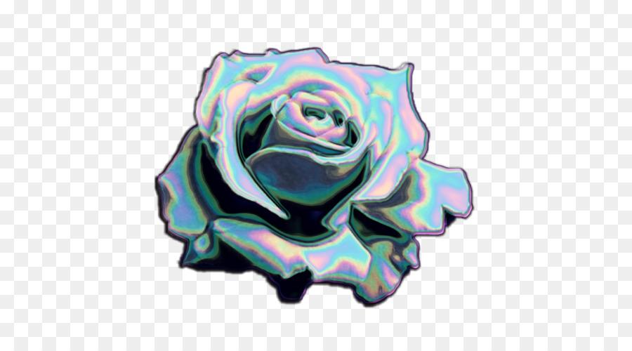 Garten Rosen Regenbogen Rose Blog Auf Tumblr Holographie Png