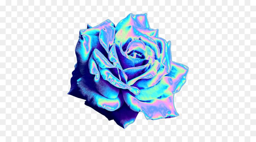 Blue Rose Garden Rosen Tumblr Blog Holographie Png Herunterladen