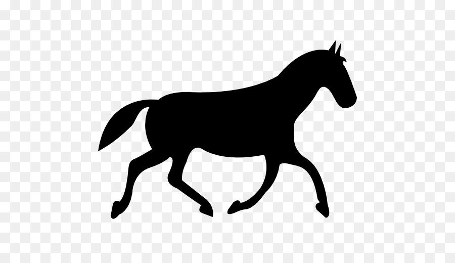 Wie Zeichnet Man Ein Pferd Zeichnen Pferdesport Pferd Png