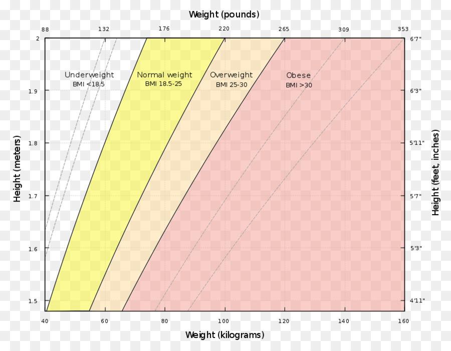 O Indice De Massa Corporal Humana O Peso Do Corpo Da Perda De Peso