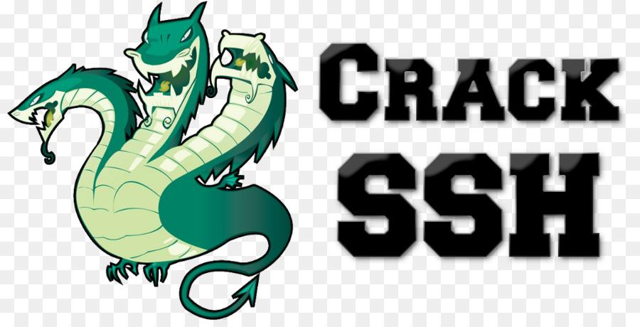 Sql Logo png download - 1024*512 - Free Transparent Hydra