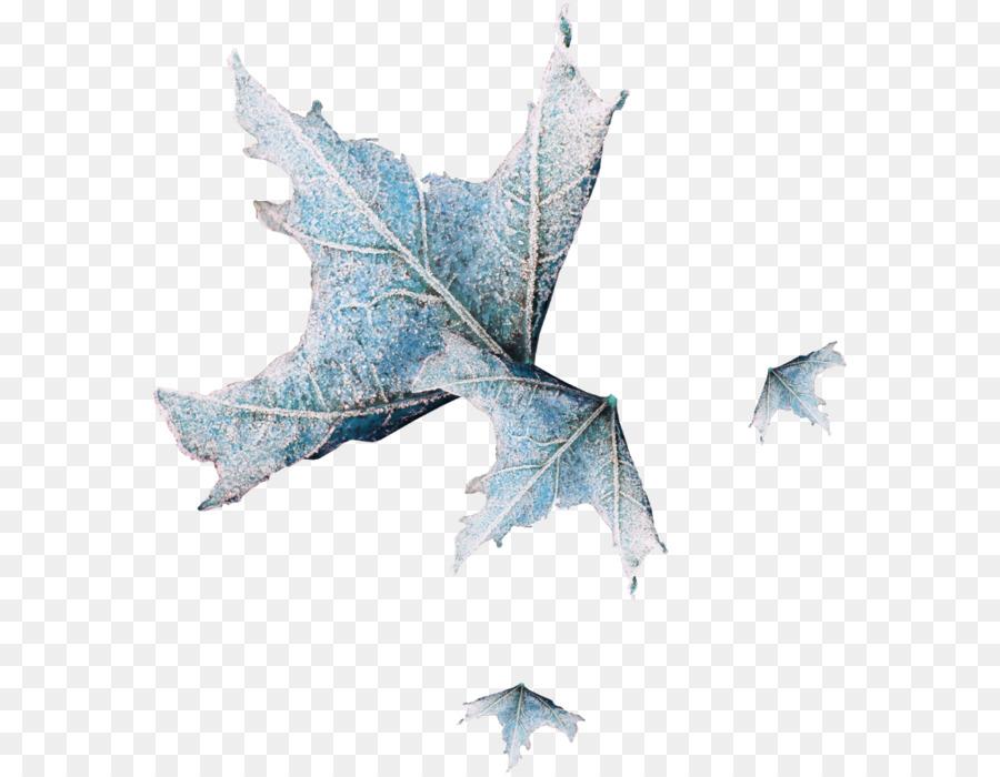 Otoño de color de las hojas en Otoño, el color de la hoja Flor de ...