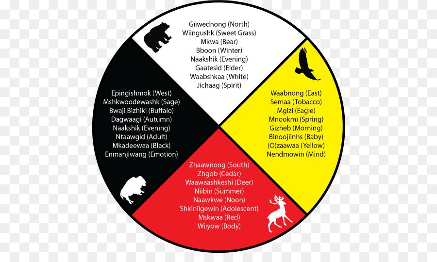 Medicine Wheel Spirituality Mental Health The Red Road Ojibwe