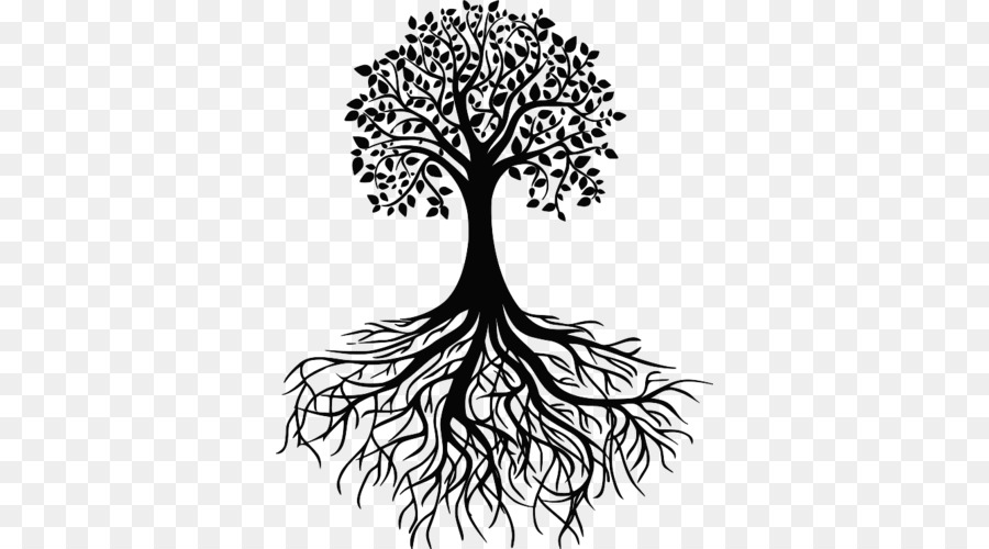 Tree Root Clip Art Tree Png Download 500 500 Free Transparent