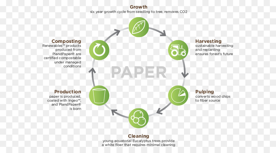 product life cycle of paper