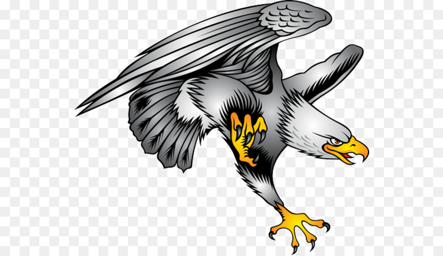Bald Eagle Clip art - eagle png download - 600*518 - Free ...