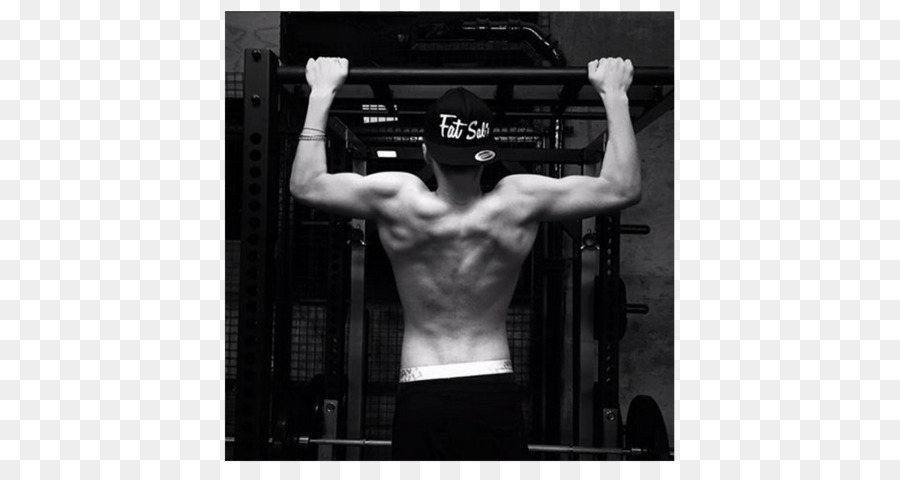 Músculo Celebridade Sistema Muscular Exercício Barra David