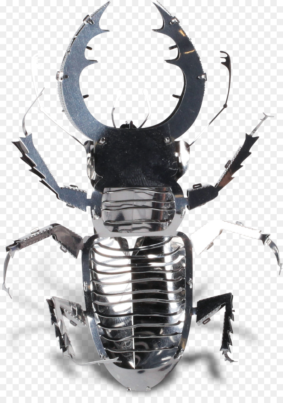 Escarabajo escarabajo Hércules Metal escarabajos Rinoceronte ...