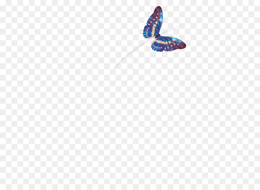 Keine Schmetterlinge beim Dating