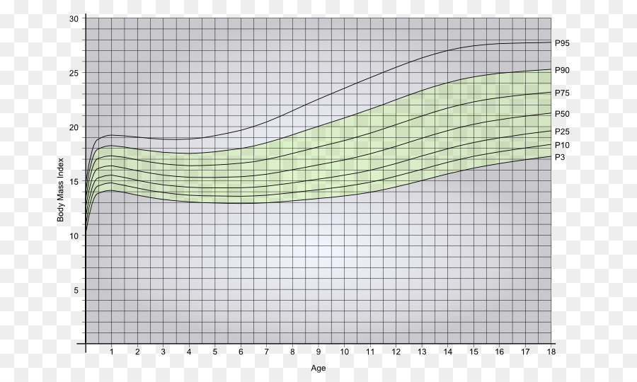 Body mass index Weight and height percentile Obesity Child Human