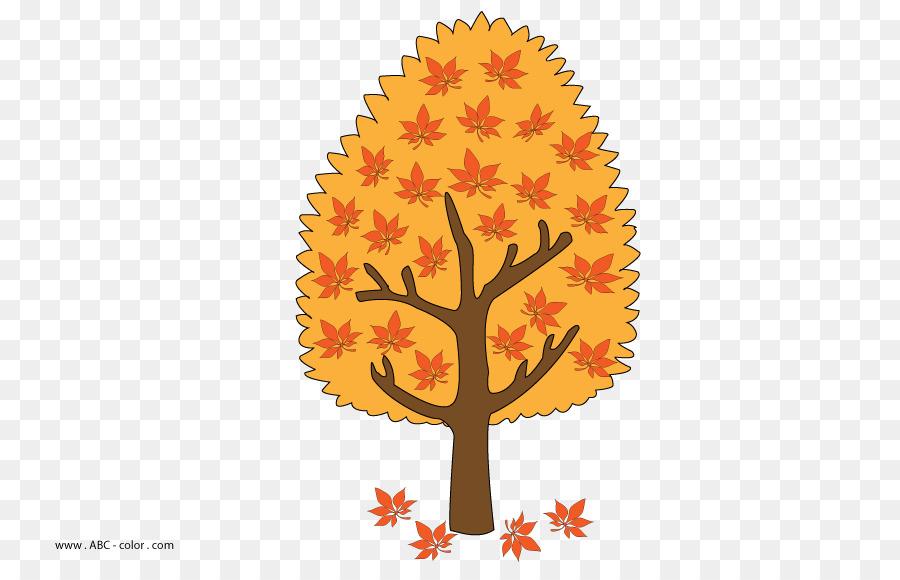 Sweet Chestnut Tree Herbst Zeichnen Von Rastergrafiken Baum Png