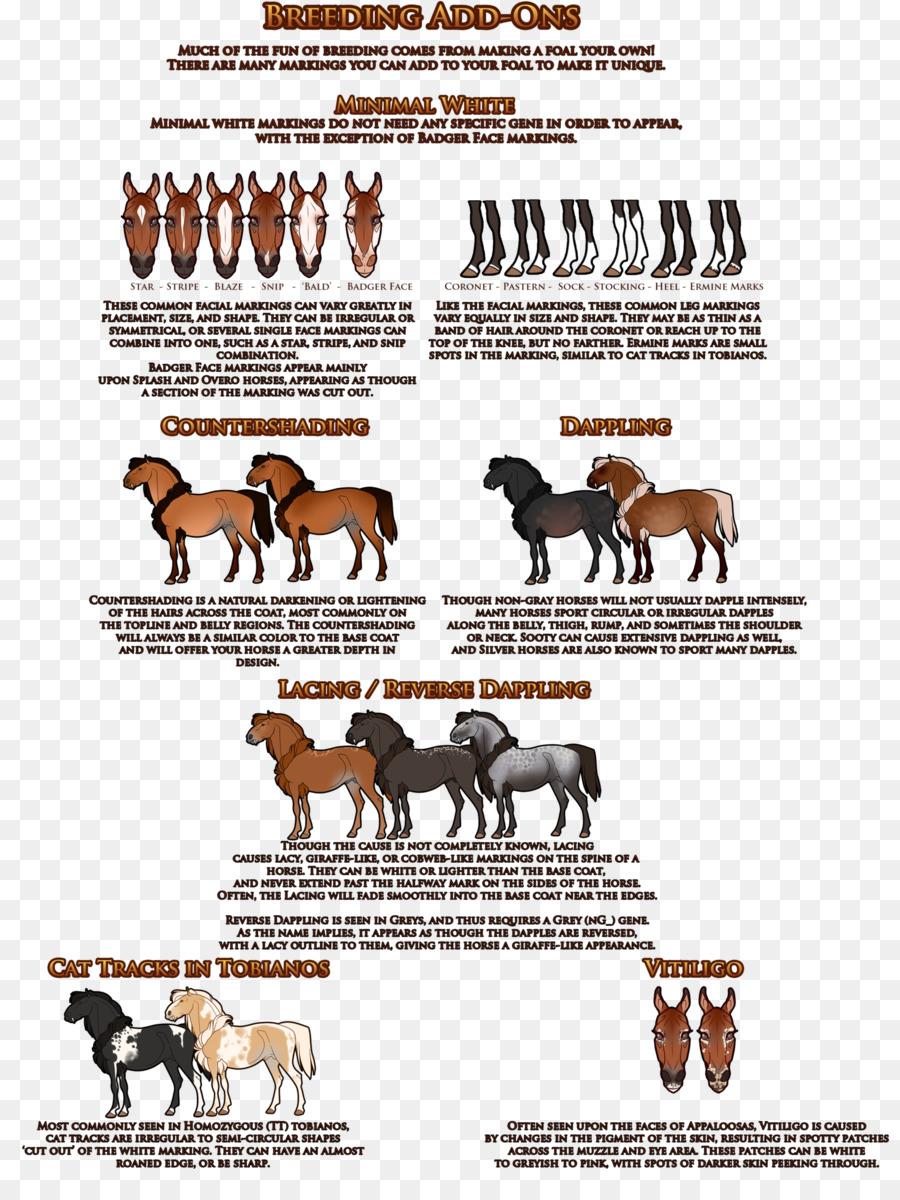 2017 Ford Mustang Horse Deviantart Mutation Digital Art Png 1600 2098 Free Transpa