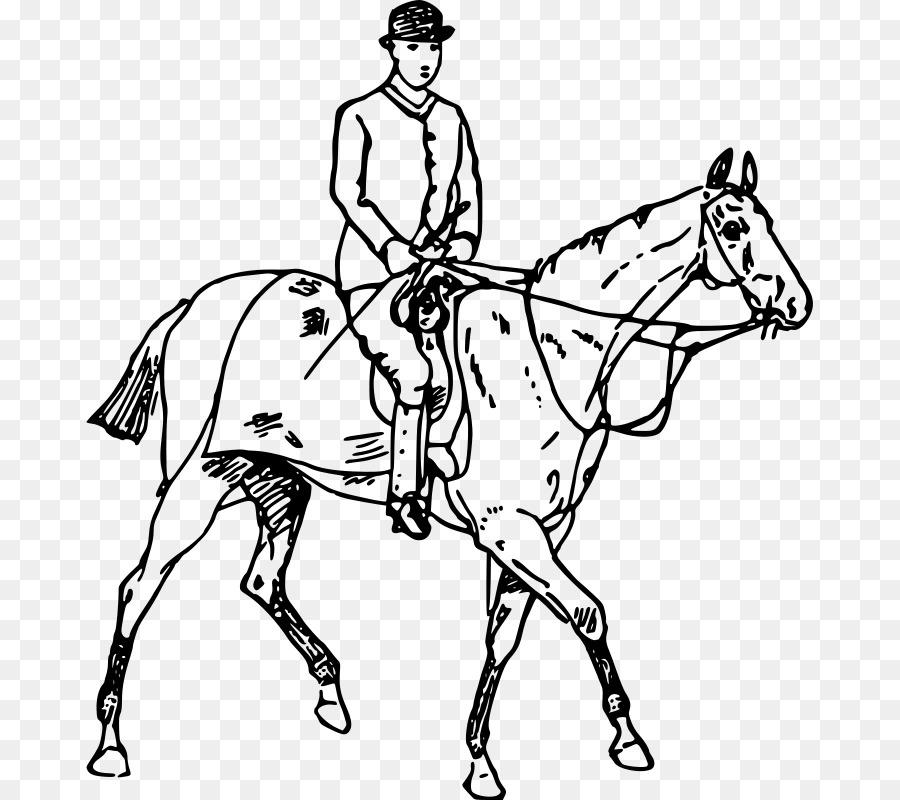 Horse Drawing Equestrian Clip Art