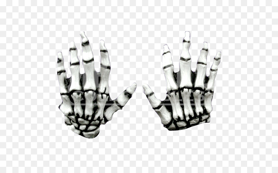 Dedo esqueleto Humano de Pies y Manos - Esqueleto png dibujo ...