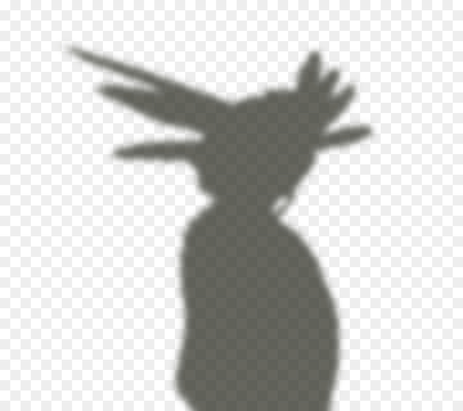 paper shadows png download - 800*800 - Free Transparent