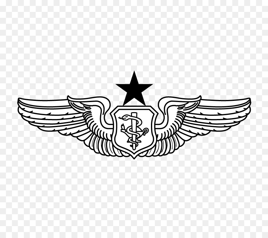 Air Force Pilot Wings Drawing Free Download Oasis Dl Co