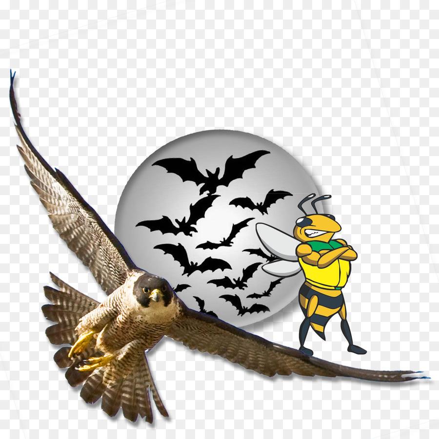 Halloween Cartoon Background png download - 900*900 - Free