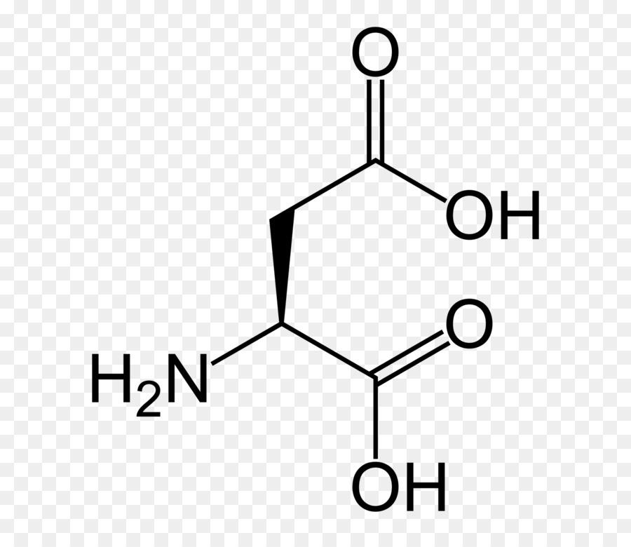 Monomer Nucleic Acid Aspartic Acid Amino Acid Others Png Download