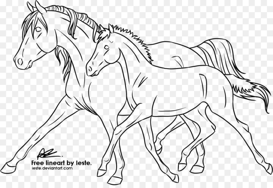 Línea de arte Potro Melena Mustang Pony - Caballo bebé png dibujo ...