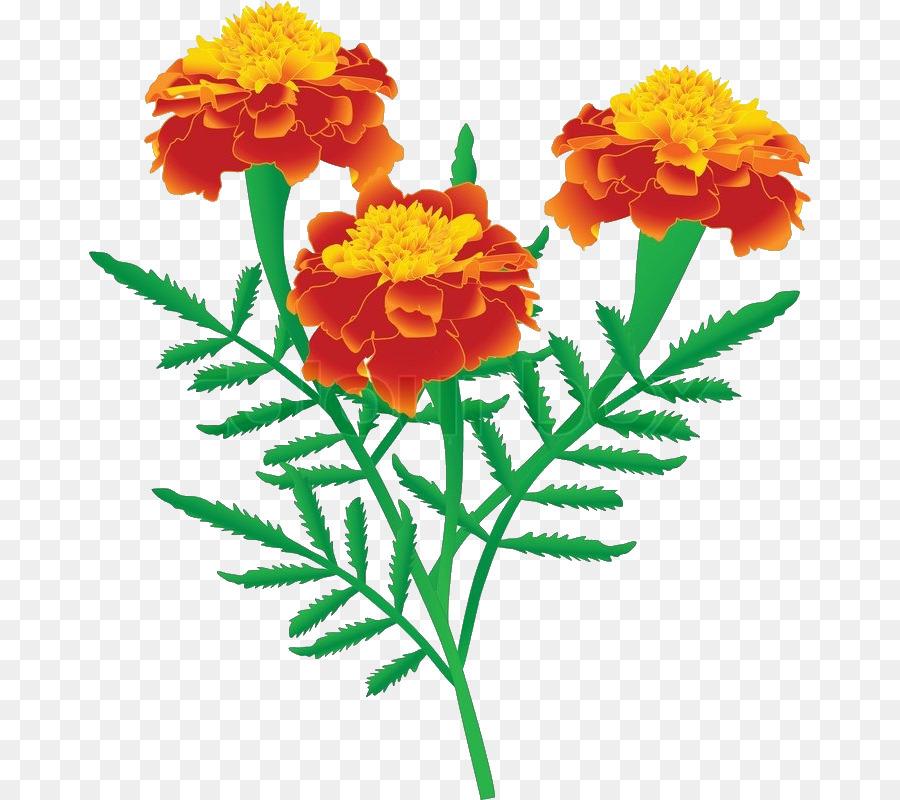 clip art of marigold flower alternative clipart design u2022 rh extravector today marigold clipart marigold clipart