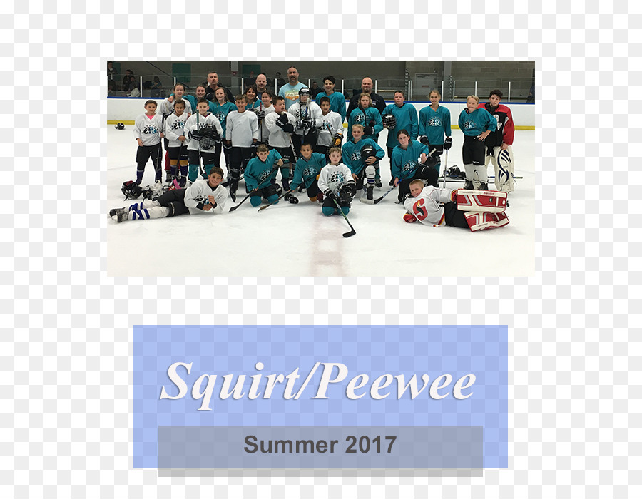 Ice Hockey Junior Hockey League Bandy Team Squirt Png Download