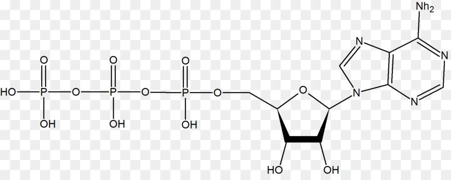Organische Chemie Chemische Verbindung Die Die Organischen