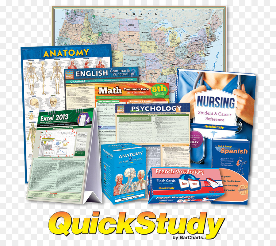 Study Skills Flashcard Information Anatomy Vocabulary Quick Card