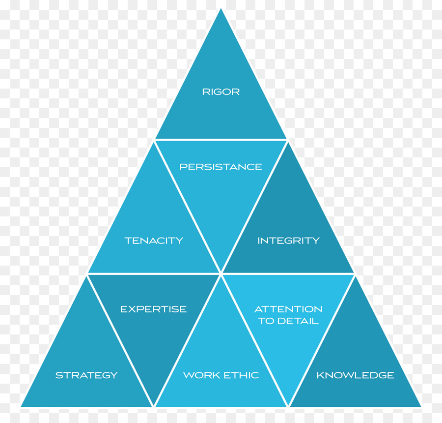 Brand Leadership Brand Equity Building Strong Brands Manufacturing