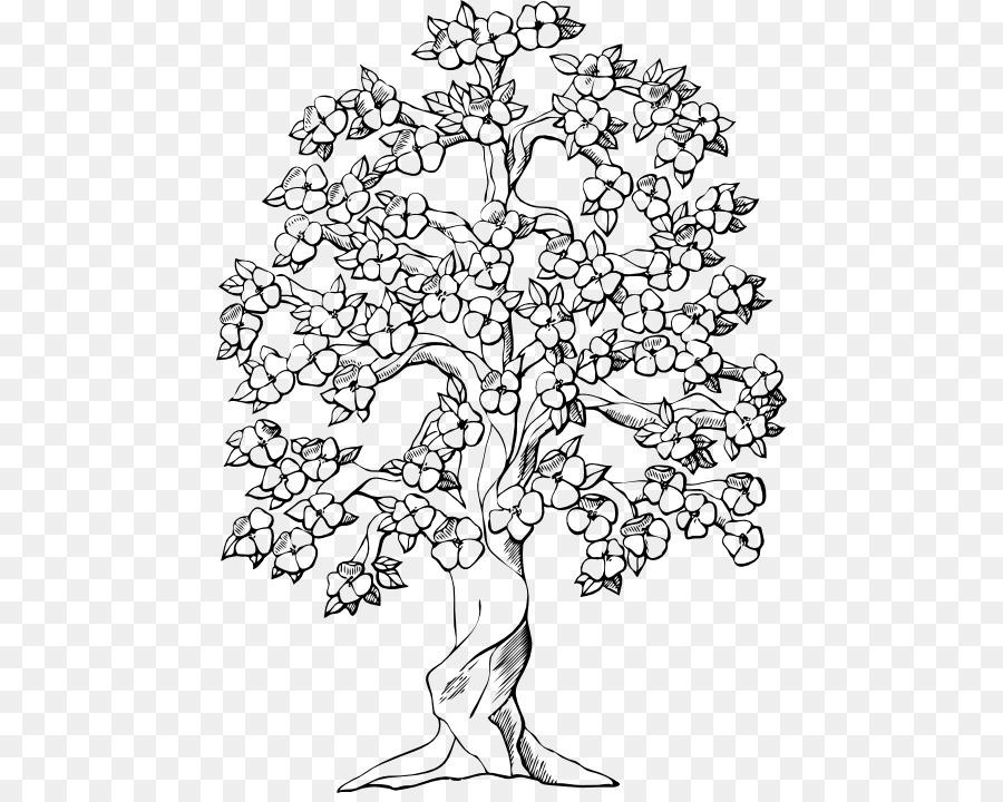 Libro para colorear de Árbol de Roble de Dibujo - árbol png dibujo ...