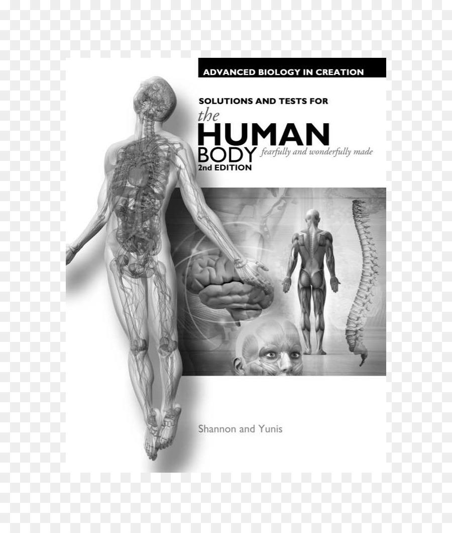Erforschung der Schöpfung mit der Menschlichen Anatomie und ...