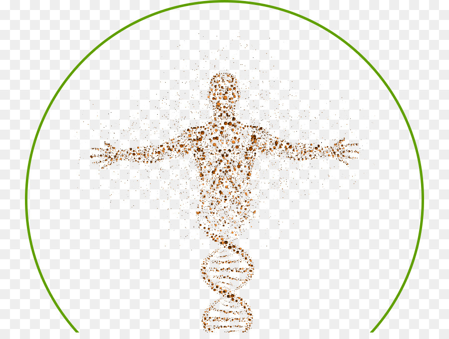 Dna Human Genome Cell Science Homo Sapiens Science Png Download