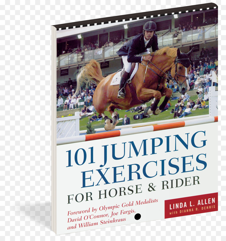 101 Jumping Exercises for Horse & Rider Icelandic horse 101 Dressage  Exercises for Horse & Rider 101 arena exercises Equestrian - book