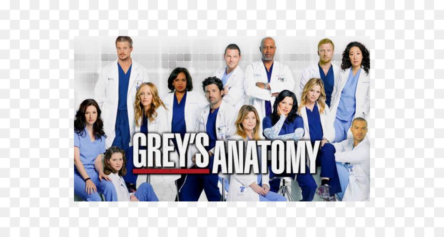 Greys Anatomy Season 14 Greys Anatomy Season 11 Television