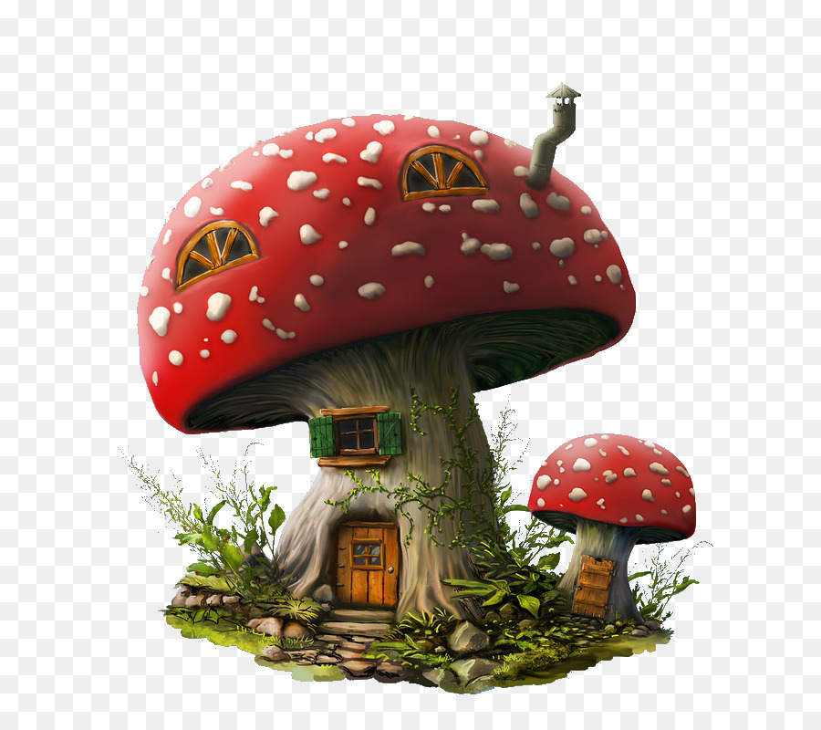 Mushroom House Drawing   Fairy House
