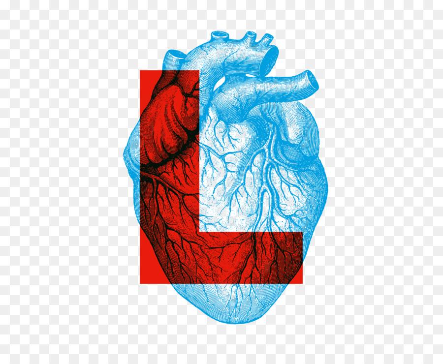 Human Anatomy & Physiology Heart - heart Formatos De Archivo De ...
