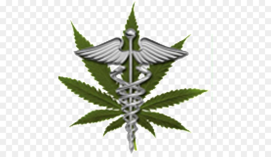 Medical Cannabis Medical Marijuana Card Dispensary Lodo Wellness