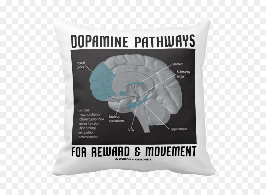Human brain dopamine neuroanatomy limbic system brain png download human brain dopamine neuroanatomy limbic system brain ccuart Image collections