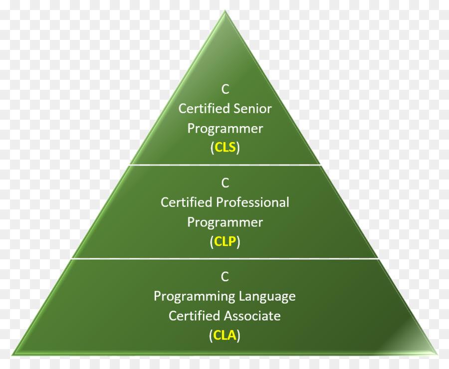 The C Programming Language Certification Senior Secondary