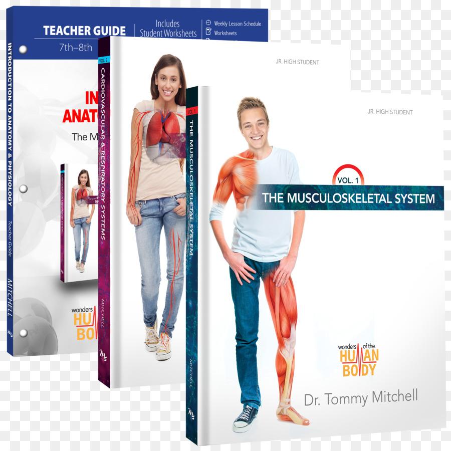 Introducción a la Anatomía Y Fisiología: El Sistema ...